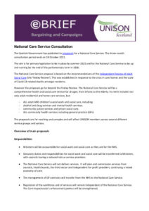 thumbnail of National Care Service Briefing.doc