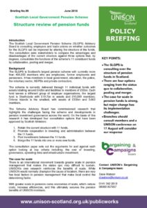 thumbnail of Policy briefing 99 – SLGPS structure review
