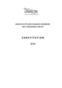 thumbnail of SDMG Constitution 2019 2711