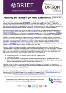 thumbnail of ebrief Cuts Impact Assessment Feb 2019