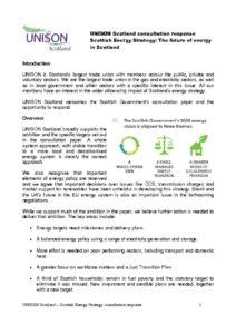 thumbnail of unison_response_energy_consultation